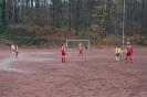 D Jugend vs. Fenerbahce_3